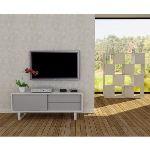 Tema home Meuble TV bas Nilo 1 porte 2 tiroirs en bois (45 x 58 x 150 cm)