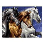 Oz international Peinture au numéro : Cavalcade (chevaux)