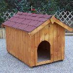 Foresta Niche à chien en bois avec toit deux pentes bitumé et plancher Hypsie
