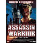 Assassin Warrior