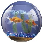 Fellowes tapis de souris bocal de poisson rouge en for Filtre aquarium rond