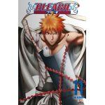 Bleach - Volume 11