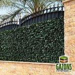 France Green Treillis Lierre extensible 1 x 2 m