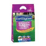 Fertiligene Engrais désherbant gazon + anti-mousses 6 kg