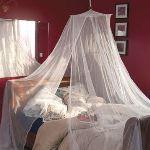 Moskitop Moustiquaire de lit 1 personne (220 x 850 cm)