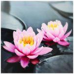 Tableau imprimé sur toile avec cadre Zen Lotus fleur et galets (28 x 28 cm)