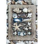 Schmidt Trésors de la plage - Puzzle 500 pièces