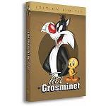 Coffret Titi et Grosminet : Rétrospective 1941 à 2003 - Volume 1 à 3