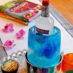 Chevalier Diffusion Rafraîchisseur de bouteille créatif Ice Cooler