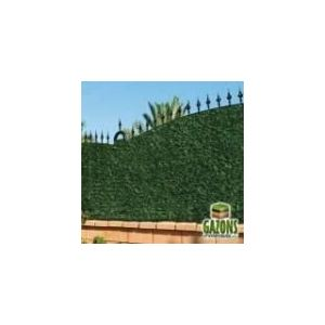 France Green Haie artificielle 243 brins 2 x 3 m