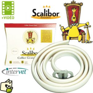 MSD Santé Animale Scalibor collier antiparasitaire pour petit chien et chien moyen 48 cm