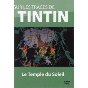 Sur les traces de Tintin - Volume 4 : Le Temple du Soleil