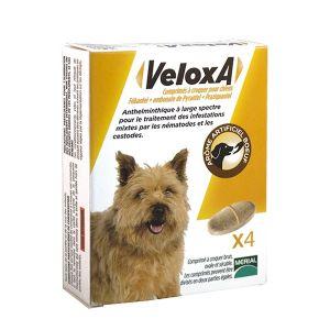 Merial Veloxa - Vermifuge chien 17,5Kg 4cp