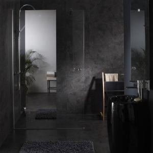 Planetebain Paroi de douche fixe avec bande effet miroir integré (120 x 195 cm)