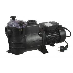 Ribiland PRSWIM750 - Pompe de filtrage pour piscine 1000 Watts