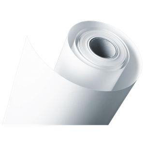 Epson C13S042078 - Papier photo Premium Luster