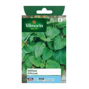 Vilmorin Melisse officinale - Sachet graines