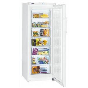 Congelateur promotion