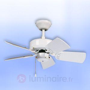 Casafan Classic Royal 75 WE - Ventilateur de plafond 5 pales