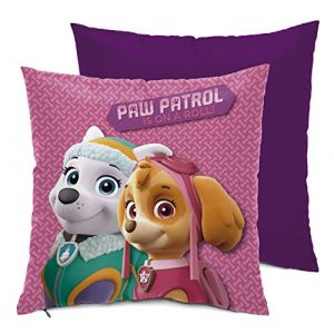 Coussin Pat'Patrouille Is On A Roll (35 x 35 cm)