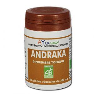 Ayur-Vana Andraka - Gingembre bio - 60 gélules