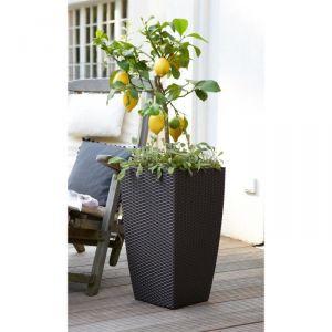 bac fleur reserve d eau comparer 629 offres. Black Bedroom Furniture Sets. Home Design Ideas
