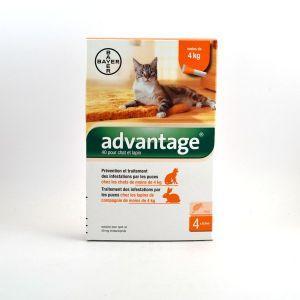 Bayer Advantage 40 Chat de 1 à 4 kg 4 pipettes