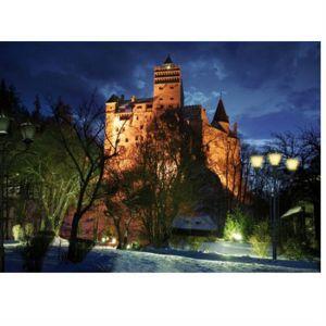 Dtoys Château De Bran, Roumanie - Puzzle 1000 pièces (modèle 1)