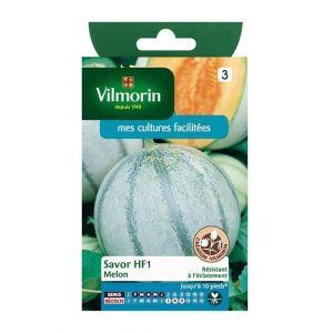 Vilmorin Melon Savor HF1 - Sachet graines