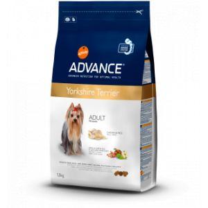 Advance Yorkshire terrier Adult - Sac de 1.5 kg