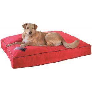 kong coussin rectangulaire pour chien taille l comparer avec. Black Bedroom Furniture Sets. Home Design Ideas