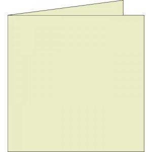 Pollen 25 cartes de correspondance pliées 210g/gm2 (160 x 160 mm)