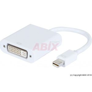 Abix Convertisseur mini DP vers DVI-D plastique