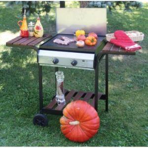 Barbecue et plancha au gaz comparer 194 offres - Canberra leroy merlin ...