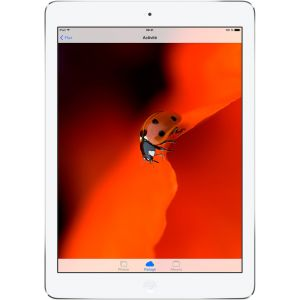 Image de Apple iPad Air 16 Go