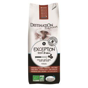 Destination Café Exception n°16 100% Arabica Grain - 250g