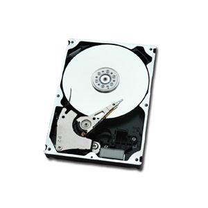 "Fujitsu FTS:ETEN2HD-L - Disque dur interne Nearline 2 To 3.5"" SAS 7200 rpm"