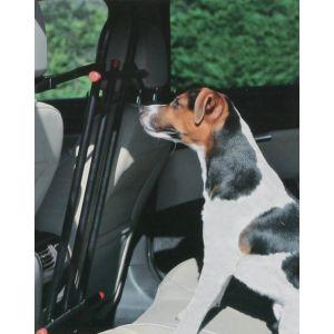 Zolux Grille de sécurité centrale voiture pour chien