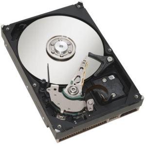 """Fujitsu S26361-F4005-L530 - Disque dur 300 Go échangeable à chaud 3.5"""" SAS-2 15000 rpm"""