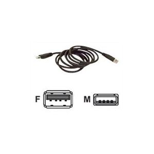 Belkin F3U134R3M - Rallonge de câble USB A (M) vers A (F) 3m