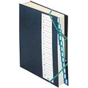 Extendos Trieur 12 cases en plastique (24 x 32 cm)