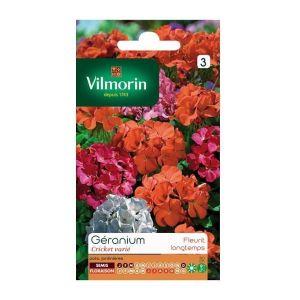 Vilmorin Géranium Cricket Varié - Sachet graines