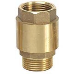 Ribiland PRCAMF1 - Clapet anti-retour pour pompe à eau