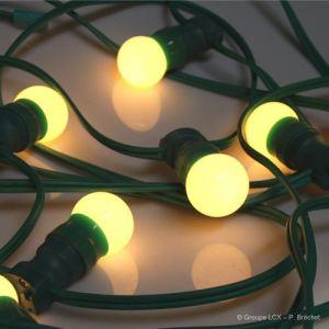 Leblanc Guirlande B22 10 ampoules