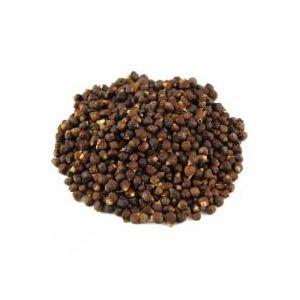Espig Maniguette : graine de paradis (1kg)