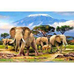 Castorland Kilimanjaro Morning - Puzzle 1000 pièces