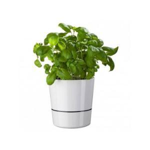 Rosti mepal Pot hydro à réserve d'eau grand modèle pour plantes aromatiques Ø13 cm