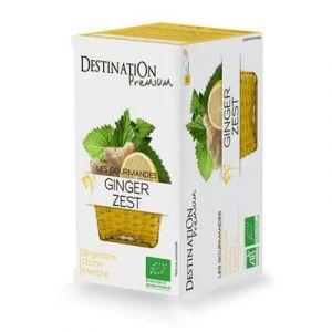 Destination Premium Tisane gourmande Ginger Zest - Boîte de 20 sachets