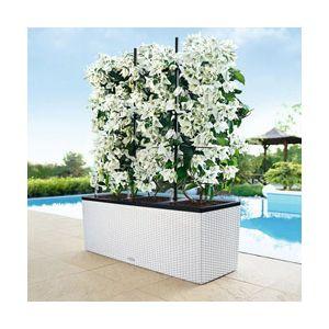Jardinière trio cottage 100 cm blanc avec treillis
