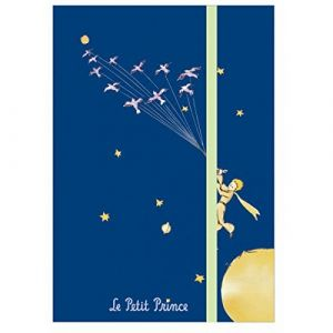 Petit Jour PR178F - Carnet rigide Le Petit Prince